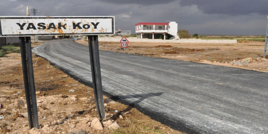 Suriye Sınırında 'Kuş Gribi' Alarmı