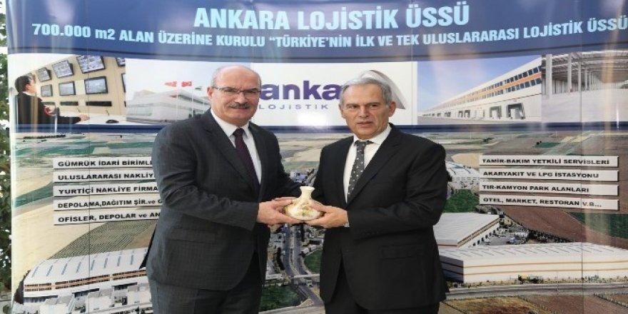Allianz'a Felis Ödülleri'nde 16 Ödül