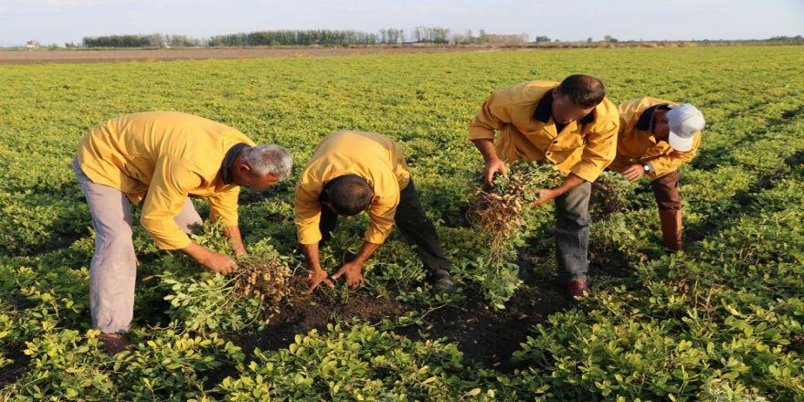 Cezalarını Organik Tarım Yaparak Çekiyorlar