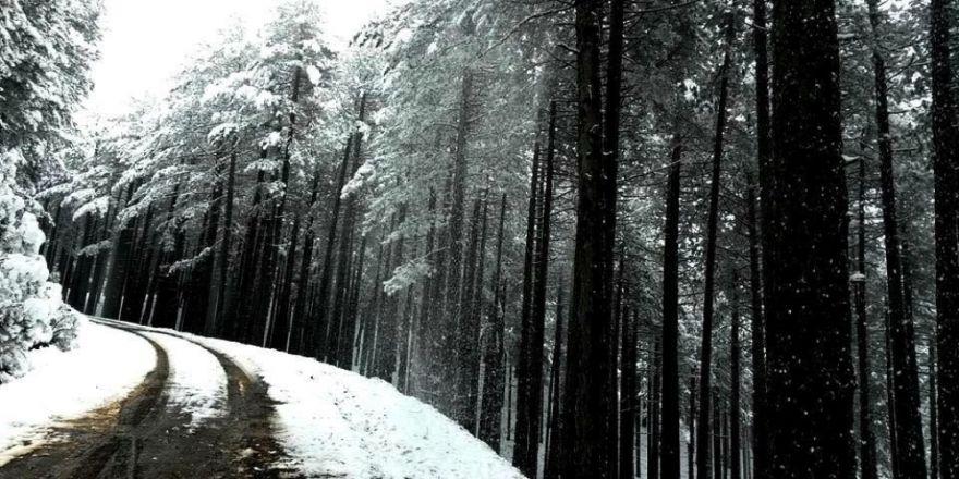 Kazdağlarından Kar Manzaraları