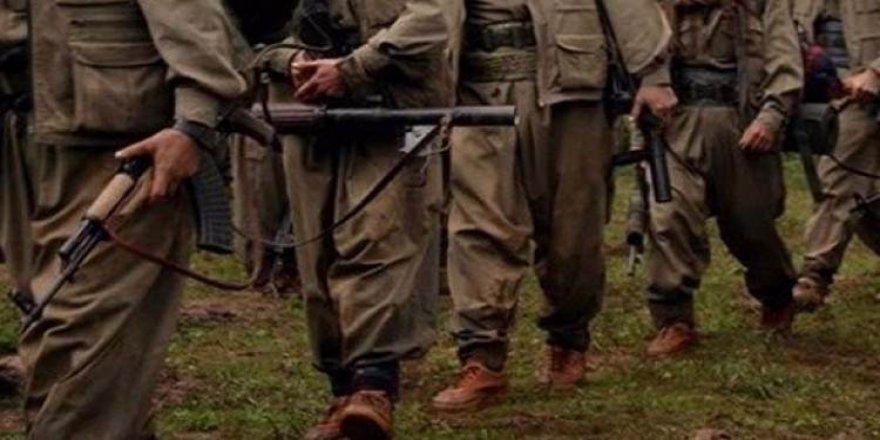 PKK ile ilgili dehşete düşüren gerçek!