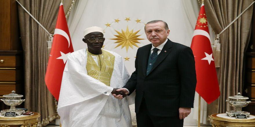 Cumhurbaşkanı Erdoğan, Gambiya Büyükelçisini Kabul Etti