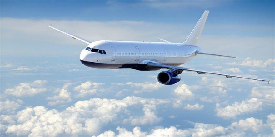 Uçaklar için kuşlardan tehlikeli