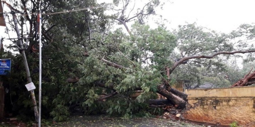Hindistan'da fırtına: 8 kişi öldü