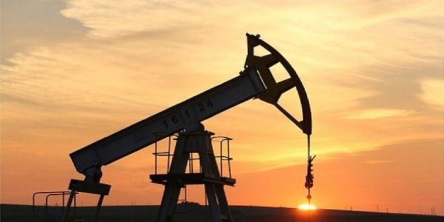 Eski petrol bakanına 'yolsuzluk' gözaltısı