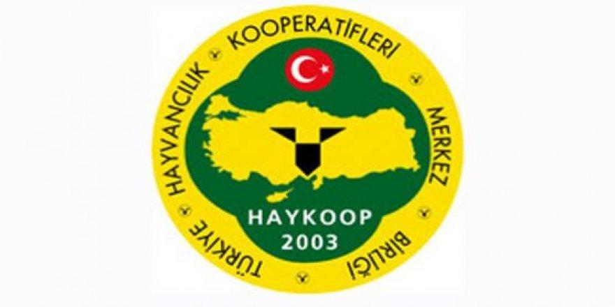HAYKOOP, Avrupa tarımı ile entegre oluyor