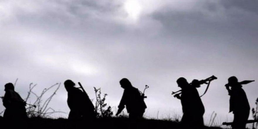 PKK'nın sözde 2 sorumlusu öldürüldü