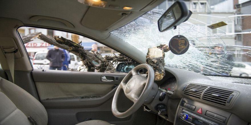 Ankara'da otomobilin üstüne ağaç devrildi: 1 yaralı