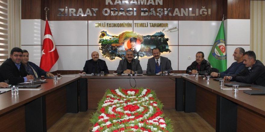 Karaman'daki zeytin üreticileri için kooperatifleşme çalışmaları