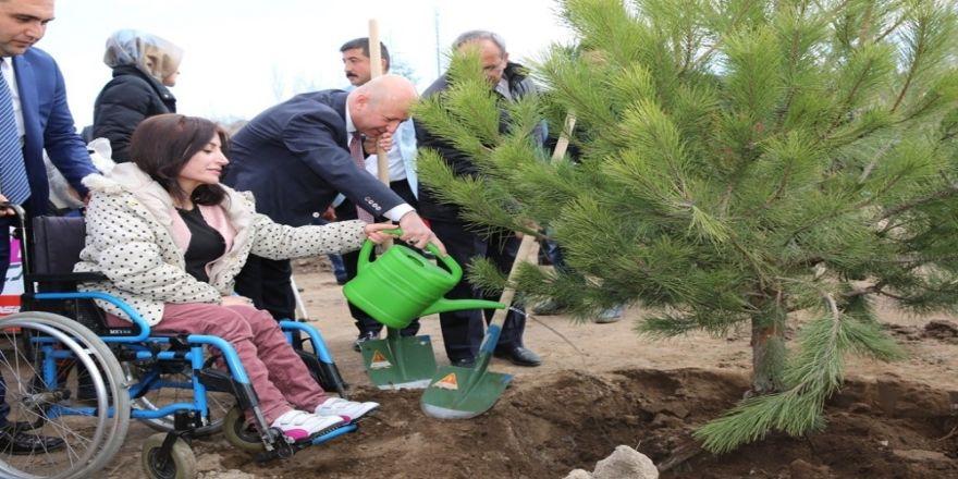 Kocasinan Belediyesi yeşil alanda rekor kırdı