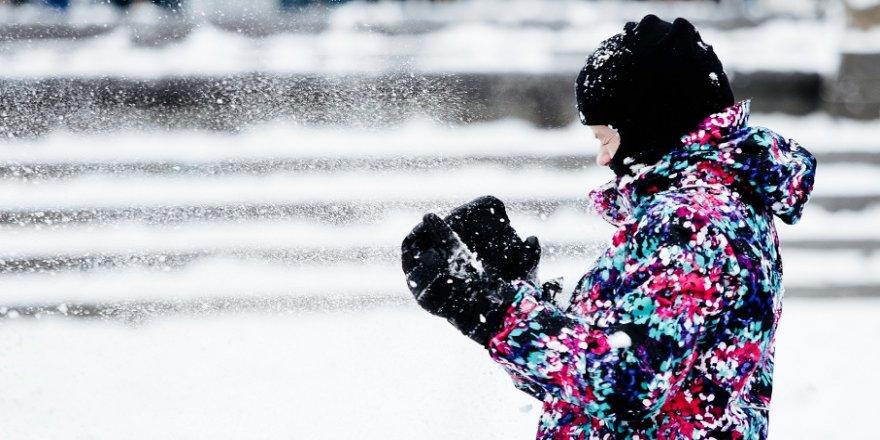 ABD'de dondurucu soğuklarda 7 kişi öldü
