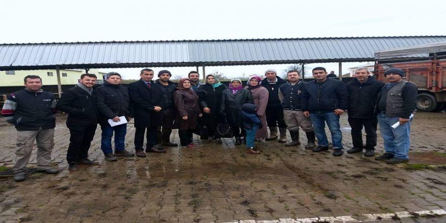 Genç çiftçilere hibe hayvan desteği