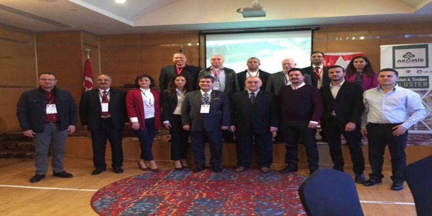 Kereste-palet URGE firmaları Mısır pazarında