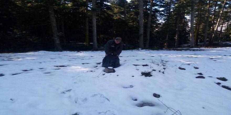 Zorlu kış şartlarında yaban hayvanları da düşünüldü