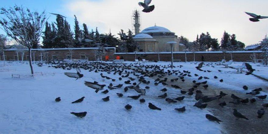 Gebze'ye kar geliyor !