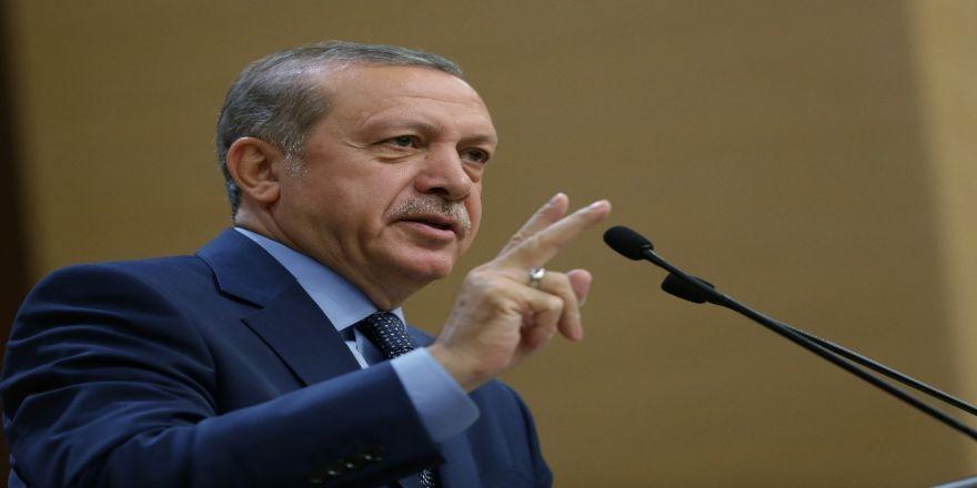 Erdoğan'dan 'Zeytin Dalı Harekatı' açıklaması