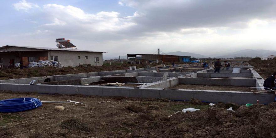 Damızlık koç-teke ağıl projesi inşaatı yükseliyor