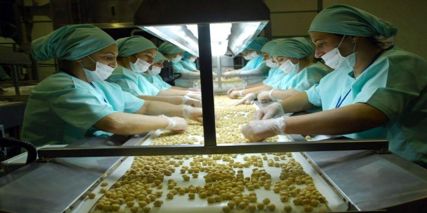 2 bin 80 ton iç fındık ihracı gerçekleşti