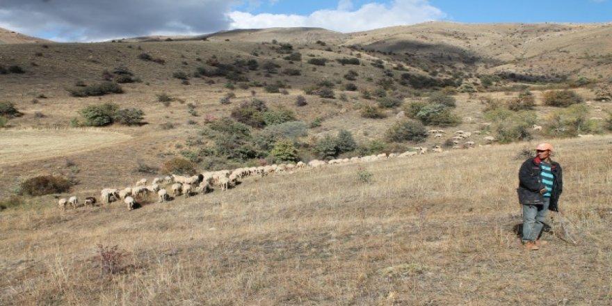 Bakan'dan Çiftçilere müjdeli haber