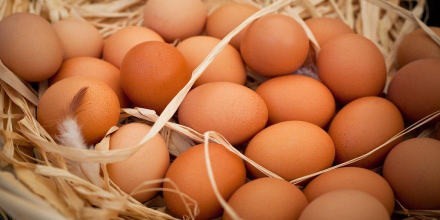 Yumurta üreticileri memnun