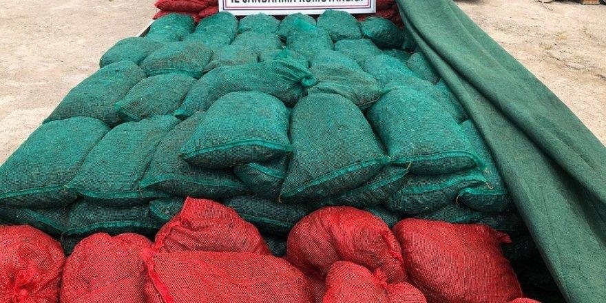 30 ton kaçak midye ele geçirildi