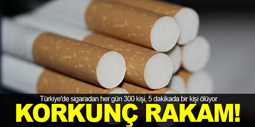 Sigaradan her gün 300 kişi ölüyor