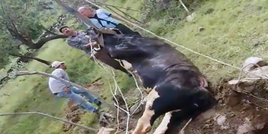 10 metrelik kuyudan itfaiye ekipleri kurtardı