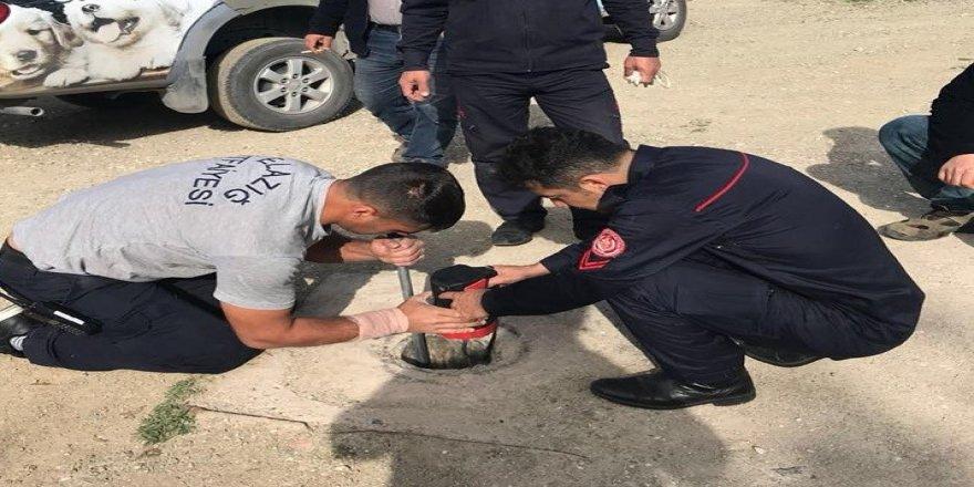 Çukura düşen yavru köpeği itfaiye kurtardı