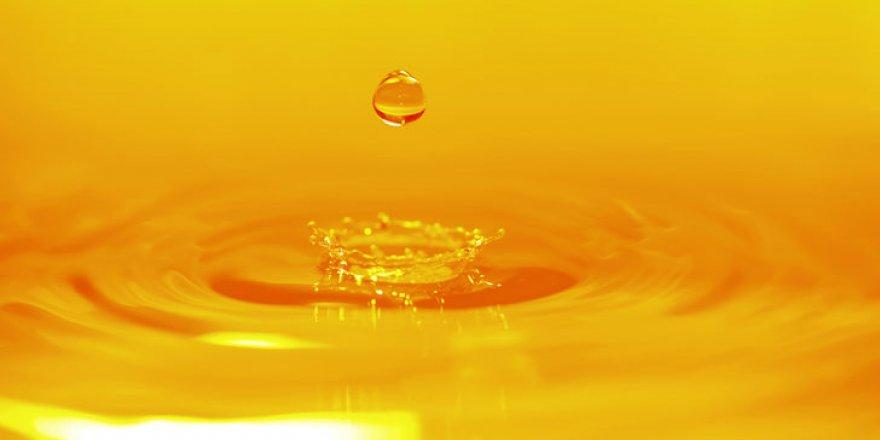 Suyumuzdan 1,5 ton altın boşa akıyor