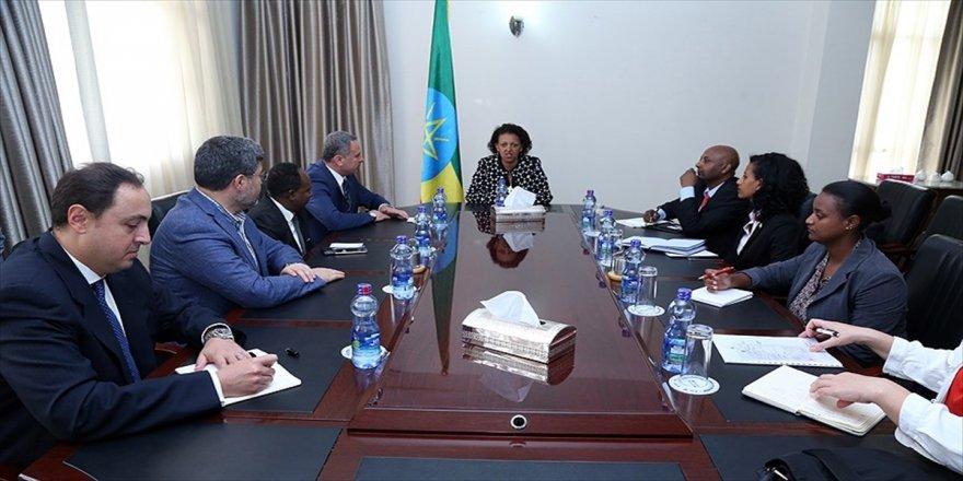 Türk vekiller Etiyopya'da FETÖ'yü konuştu
