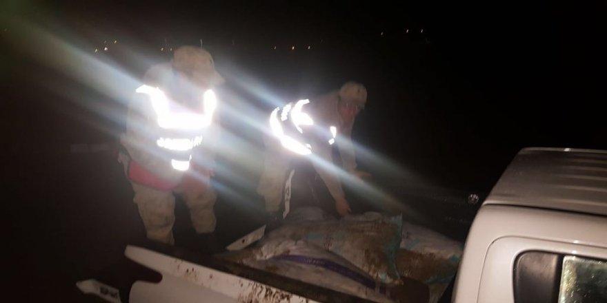 Kaçak avlanmış bir ton balık ele geçirildi