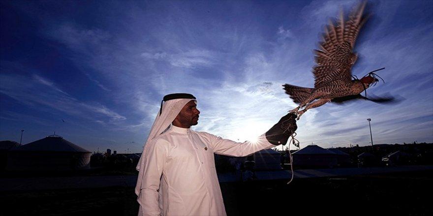 Katar'ın kanat çırpan çocukları: Şahinler