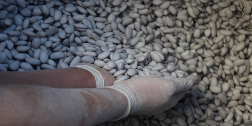 Badem şekerine talep 10 kat arttı