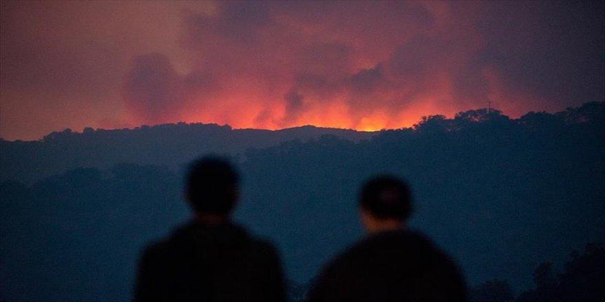 Orman yangını çıkartana rekor ceza