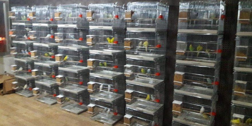 60 Bin TL'lik malzeme çalan 3 şüpheli yakalandı