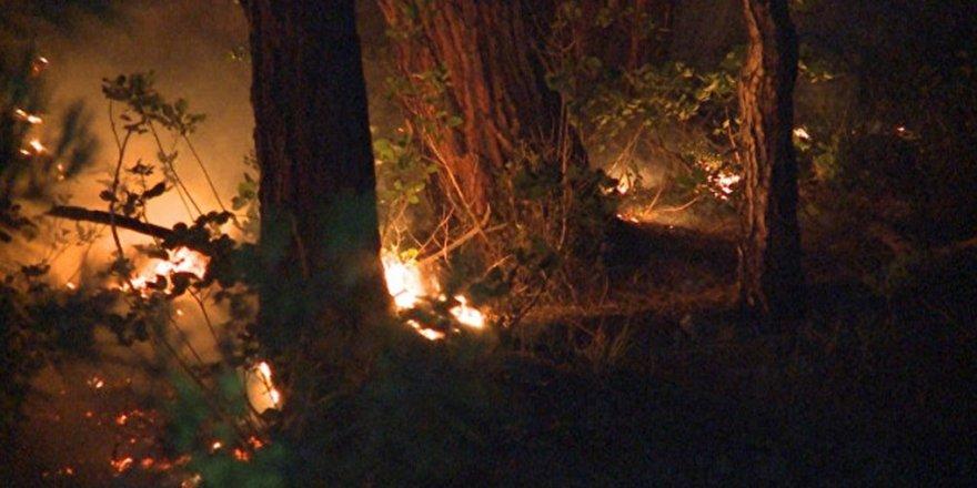 Orman yangını söndürülemedi