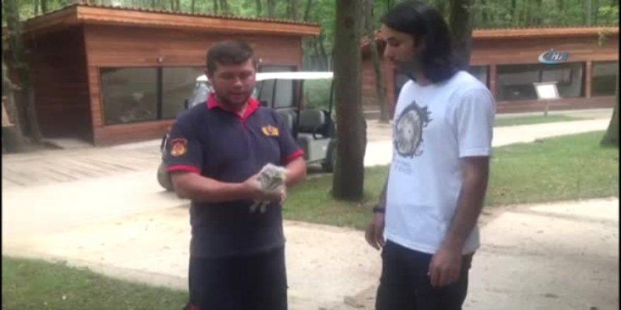 Ender görülen peçeli baykuşlarını itfaiye kurtardı