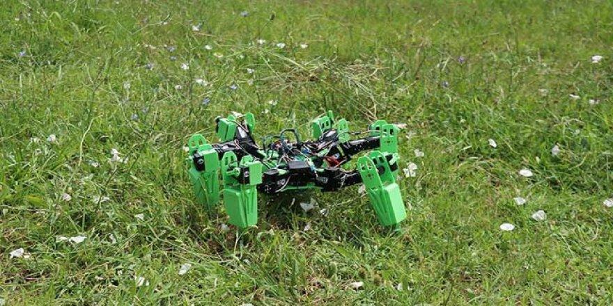 Askeri operasyonlar için örümcek tasarlandı!