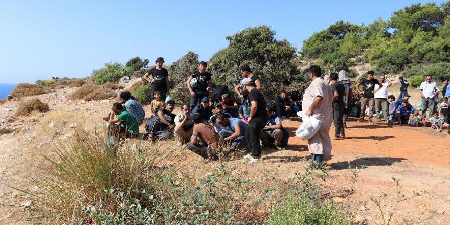 Kaçak mülteciler muz bahçesinde yakalandı