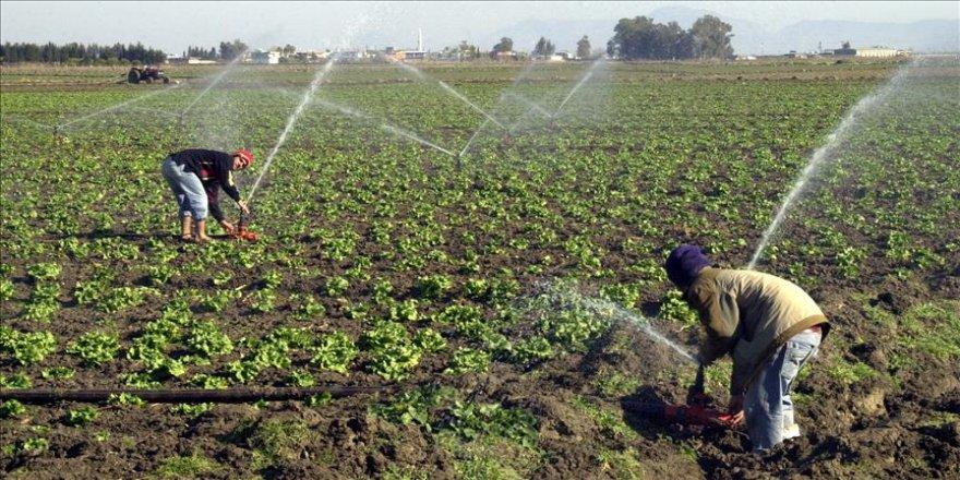 Tarım arazileri suya kavuştu