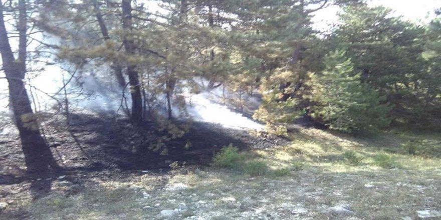 Yangının büyümesini imam önledi