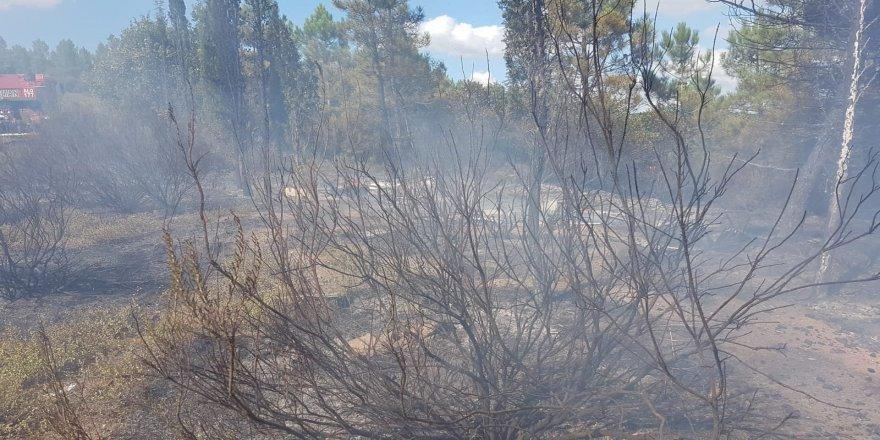 Gebze'de arıcının yaktığı ateş ormana sıçradı