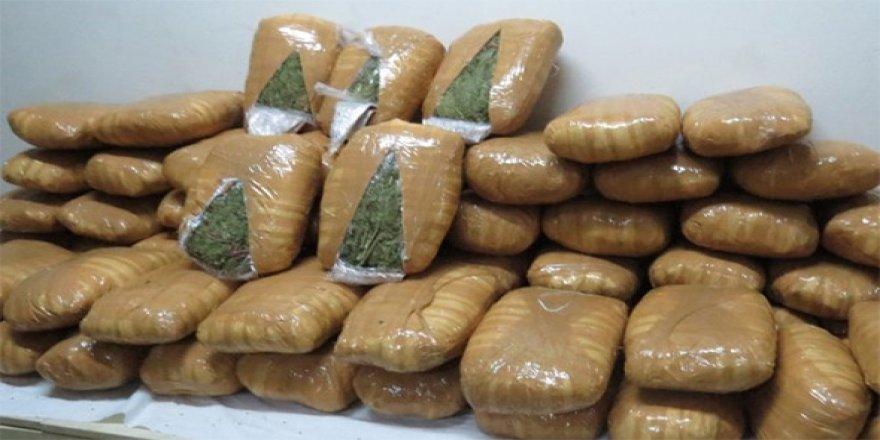 Rus uyruklu kadının midesinden 7 paket uyuşturucu çıktı