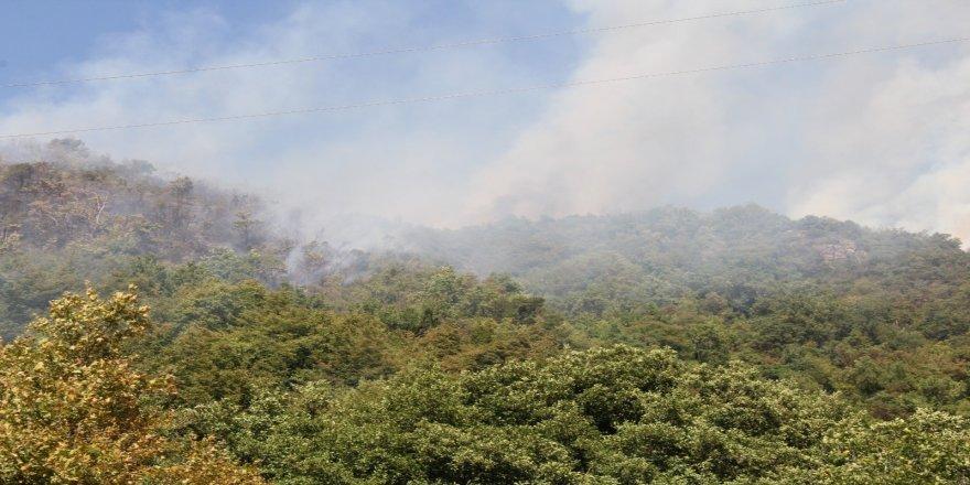 Çıkan yangın helikopter ile söndürüldü