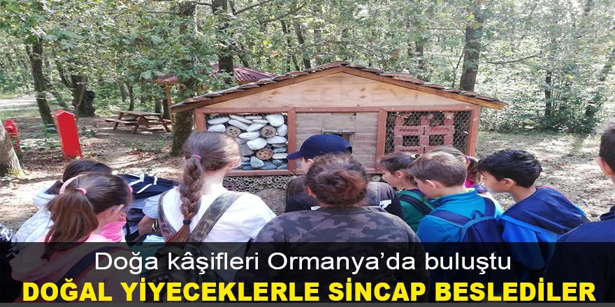 Doğa kâşifleri Ormanya'da buluştu