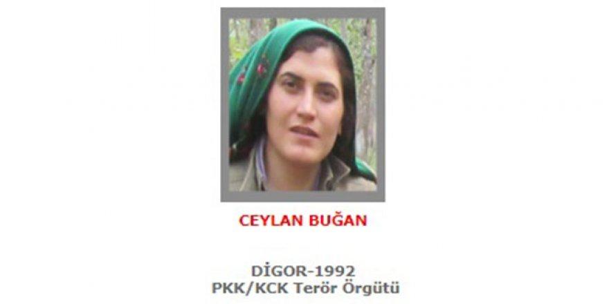 300 bin TL ödüllü kadın terörist öldürüldü