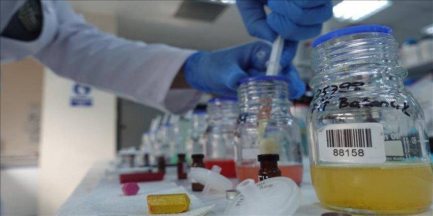 Kimya sektörü ihracatta ikinciliğe yükseldi