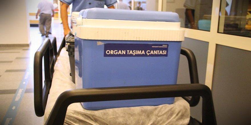 Organları 3 kişiye hayat verecek