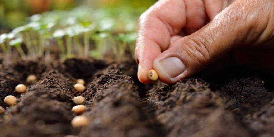 Bakan Pakdemirli'den yerli tohum mesajı