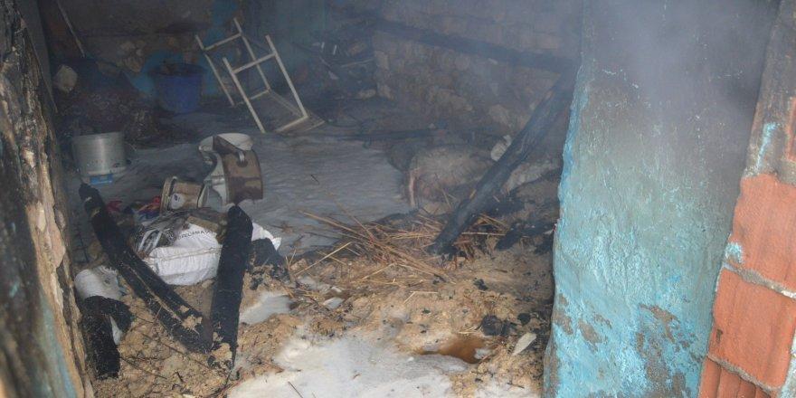 Ahır yangınında 6 hayvan telef oldu